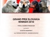 tyrol-03-grand-prix-slovakia-winner